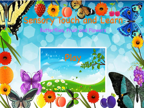 Sensory Touch and Learn - Butterflies Fruit and Fl