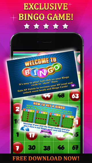 Bingo Lady Rush PRO - Play the most Famous Card Game in the Casino for FREE