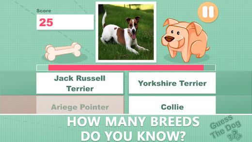 Dog Breeds 2014