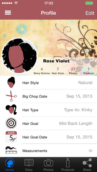 Hair Journal Pro