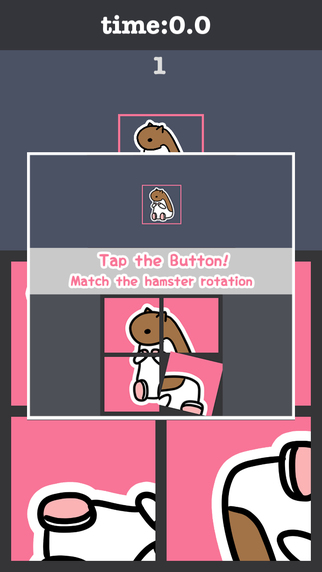 Rotate Hamster Puzzle