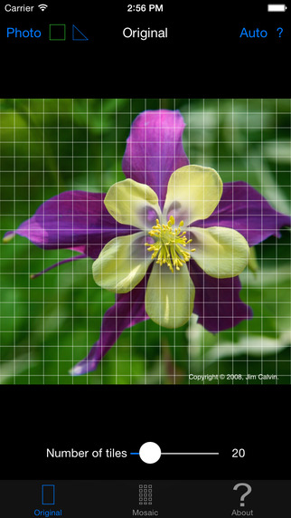 Color Hints Mosaic