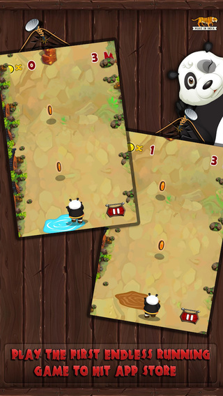 Panda Dash Adventure