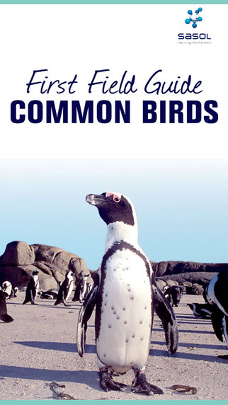 Sasol First Field Guide Common Birds of Southern Africa Full Version
