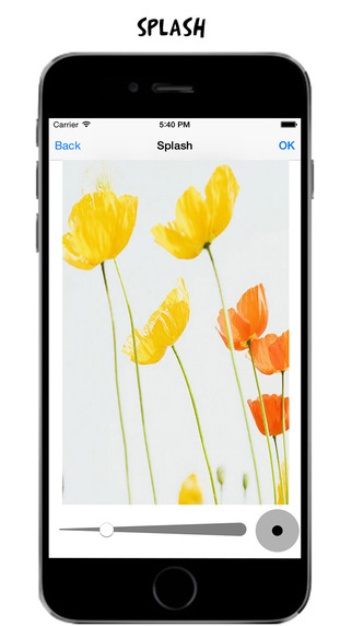 PicLab Toolkit MX - adjust, enhance, straighten, or facetune your photo everyday Screenshots