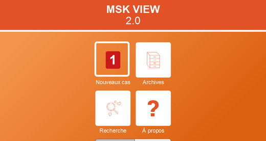 MSK view