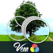 Venn Trees: Overlapping Jigsaw Puzzles