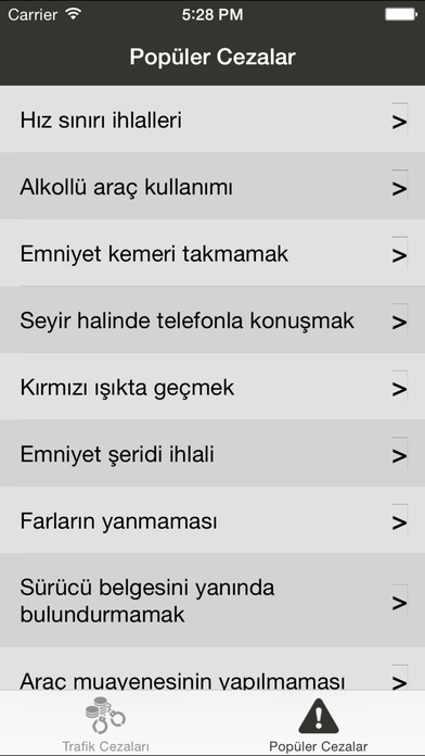 Trafik Cezaları iPhone Screenshot 3