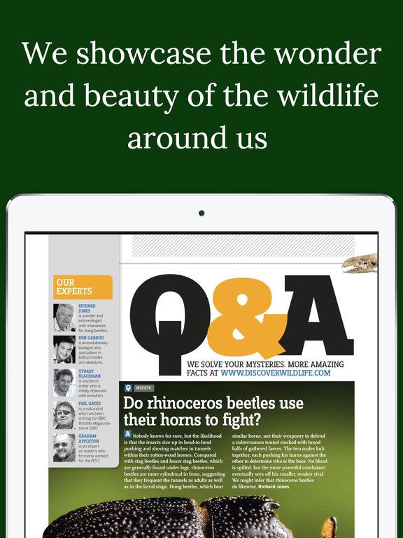 iPad Screenshot 5