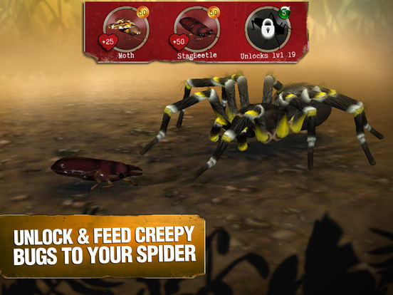 Real Scary Spidersscreeshot 3