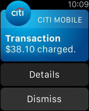 Citi Mobile (sm) iPhone Screenshot 8