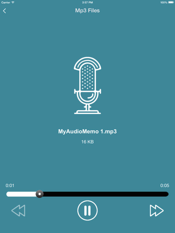Top Audio Recorder - My Voice Memos PRO Screenshots