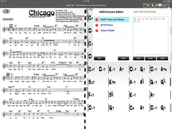 iGigBook sheet music manager iPad Screenshot 3