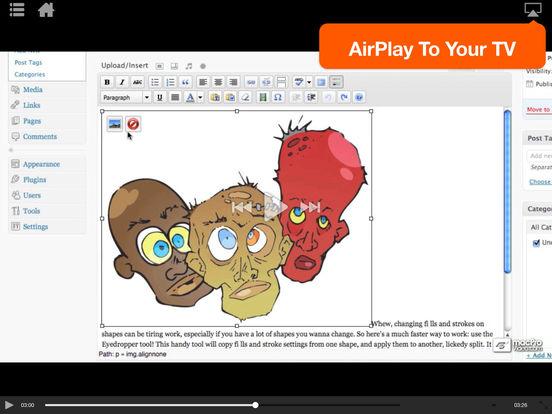 WordPress 101 iPad Screenshot 3
