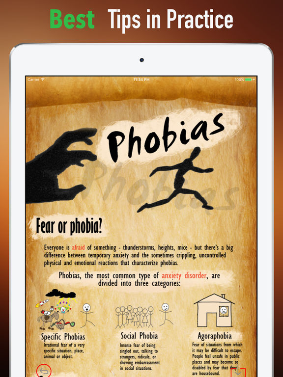 the three categories of phobias Three types of fear what do we fear terrorist attacks the rise of radical islamism danger crime failure rejection change loss the future.