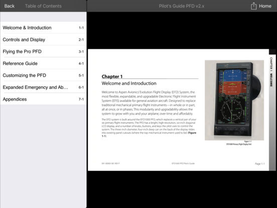 Flying the Aspen Evolution iPad Screenshot 2