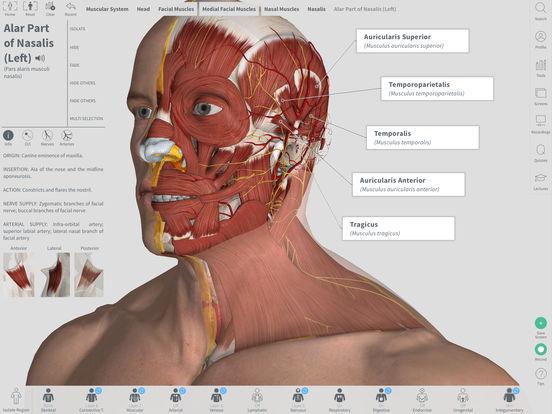 Complete Anatomy Screenshot