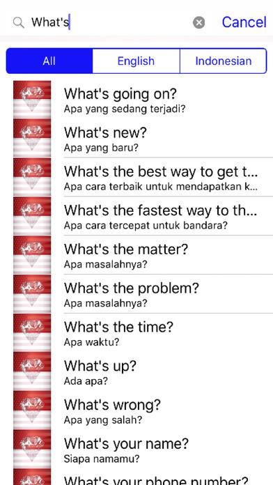 Indonesian Phrases screenshot 2