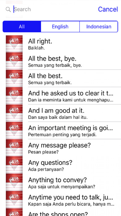 Indonesian Phrases screenshot 1