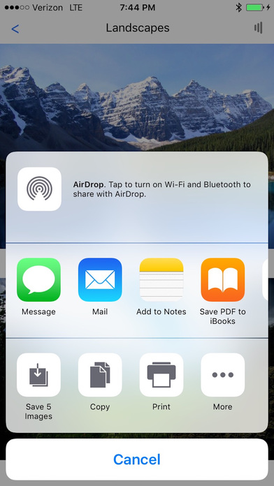 how to download all photos from shared albumn icloud