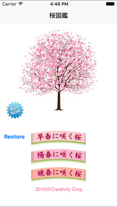 Sakura Collection Screenshots