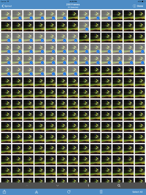 OSnap! Pro • Time-Lapse & Stop Motion Camera Screenshots