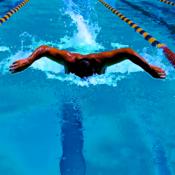 游泳教练剪贴板