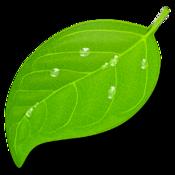 Macアプリ「Coda 2」 - インデントをタブからスペースに変更