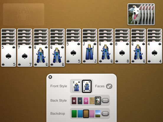 Screenshots of ⋆Spider Solitaire for iPad