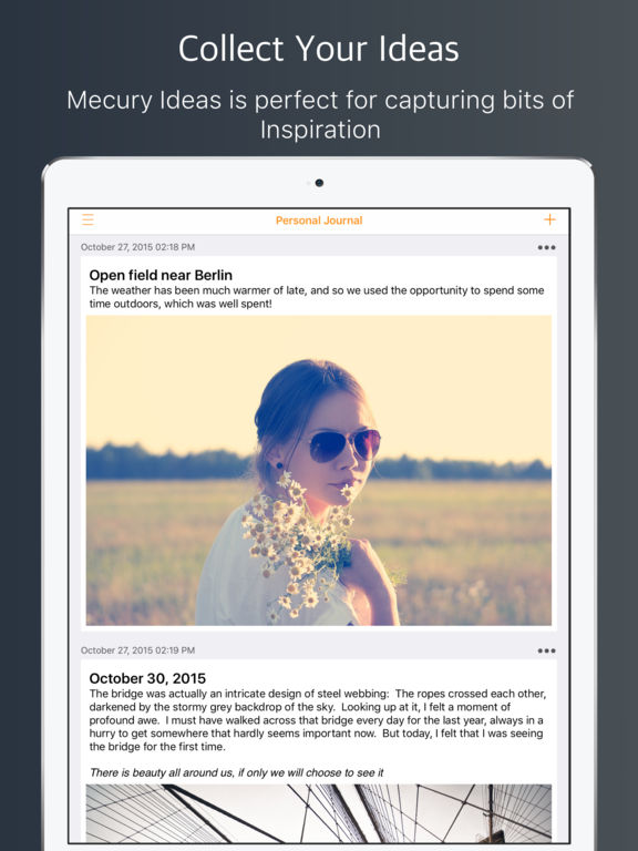 Mercury Ideas - Capture Inspiration.  Record Plans Screenshots
