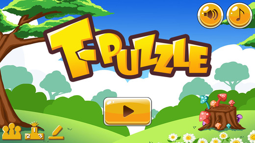 T-Puzzle