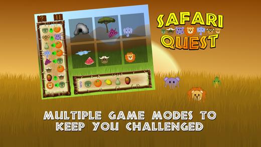 Safari Quest - Logic Puzzle Game