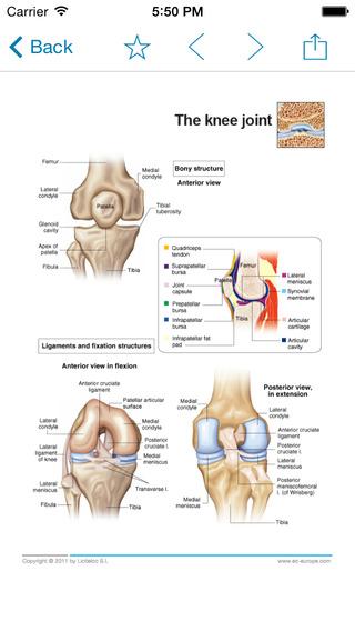 Miniatlas Joint Diseases iPhone Screenshot 2