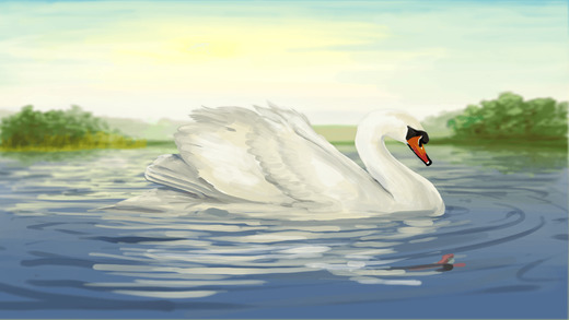 Where the Swans Sleep - a mindful picture story book app