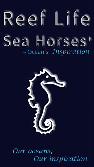 Sea Horses by Reef Life