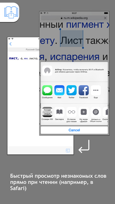 Russian Spelling Dictionary iPhone Screenshot 3