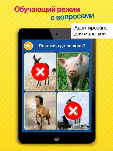 Скачать Звуки животных, транспорта, музыкальных инструментов и многое другое в Smart Baby Touch HD - развивающие карточки для детей