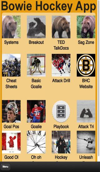 Bowie Hockey App