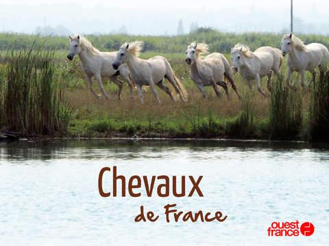 Chevaux de France