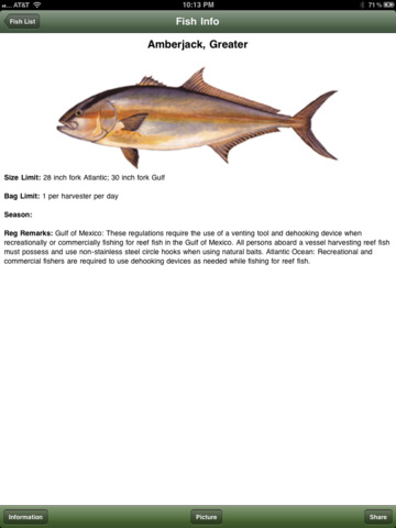 Nc saltwater fishing companion apppicker for Nc saltwater fish