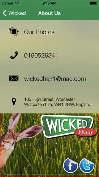 Wicked Hair