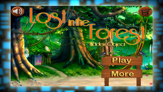 Lost In the Forest - Hidden Objects