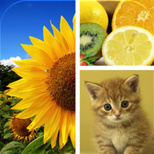 Photo Collage Maker ∞ - iOS Store App Ranking and App Store Stats