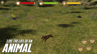Dachshund Simulator - HD screenshot 4