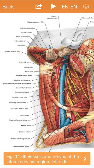 Sobotta Anatomy Atlas Free - appPicker