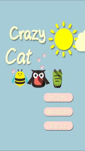 Crazy cat planet
