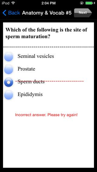 Medical-Coding Exam Prep