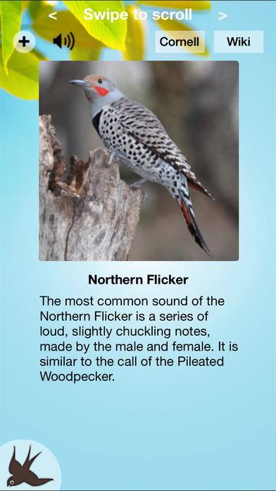 Chirp! Bird Songs Canada iPhone Screenshot 1