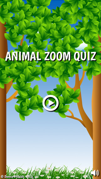 Animal Zoom Quiz