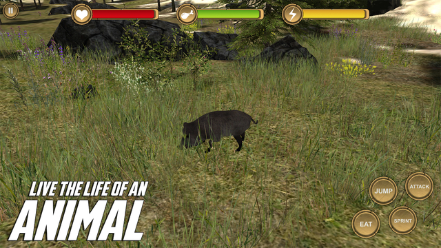 Boar Simulator HD Animal Life